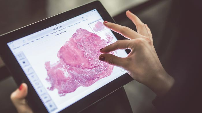 Philips and Targos collaborate to advance digital pathology education and enhance global training